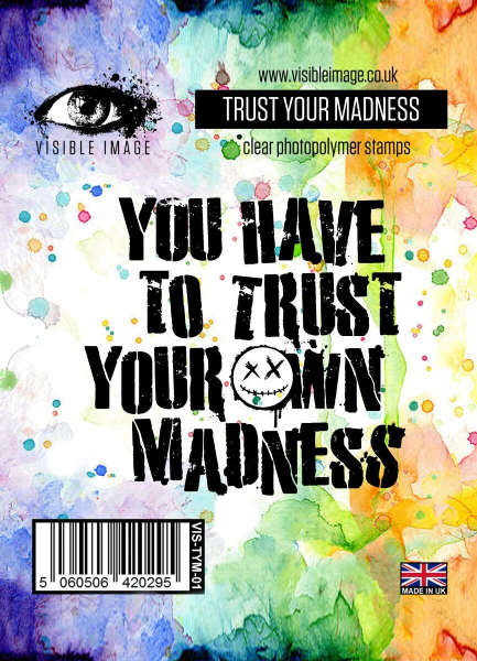 Visible Image Trust Your Madness